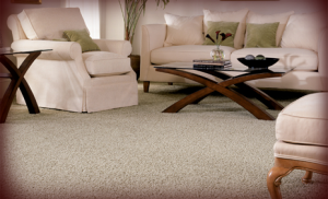 StainMaster Carpet Textures