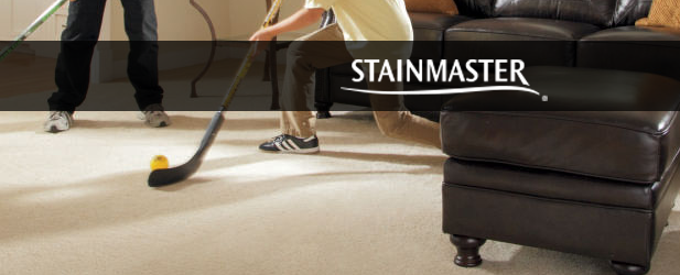 stainmaster active family review