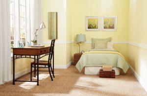 Stainmaster essentials collection floortalk review