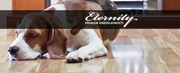 Eternity LVT SG No VOC Underlayment Review